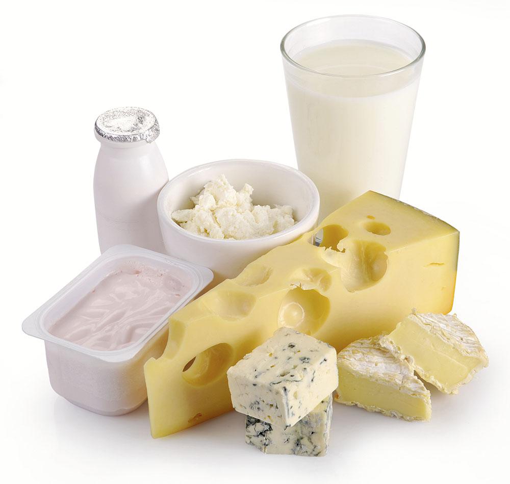 Milk cheese yogurt eggs